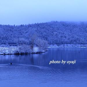 雪の余呉湖2020