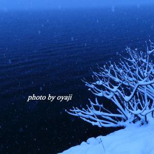 余呉湖に降る雪