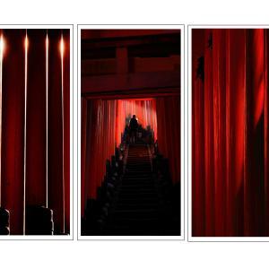 滋賀県写真展覧会 入選作品「千本鳥居 神への道」