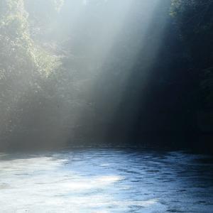 凍り付く新池に光差す