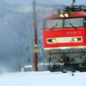 雪上を進む