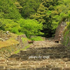 延々と続く石段~安土城跡