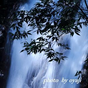楊梅の滝 流れ