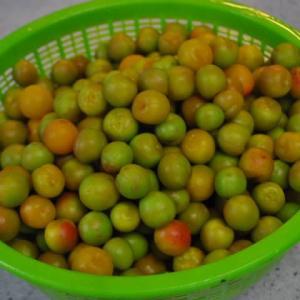 小梅の梅干し作り