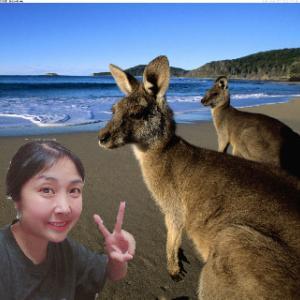 おはよう☆気持ちだけオーストラリア!