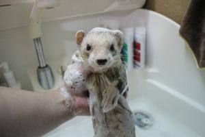 お風呂大好き・ふつう・大嫌い