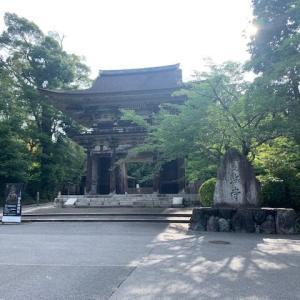 久しぶりに三井寺へ。