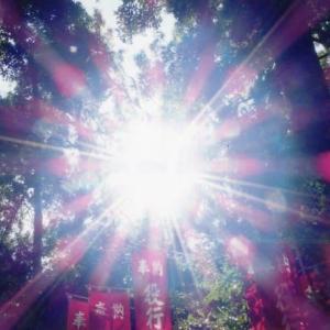 ゼロ磁場 西日本一 氣パワー開運引き寄せスポット 1年11月11日の太陽光(11月12日)