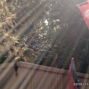 ゼロ磁場 西日本一 氣パワー開運引き寄せスポット 1年11月11日の七色光(11月17日)