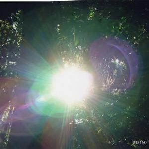 ゼロ磁場 西日本一 氣パワー開運引き寄せスポット 小雨の中のお不動さん祭り(11月29日)