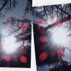 ゼロ磁場 西日本一 氣パワー開運引き寄せスポット 無事新型コロナウイルス撲滅祈祷終わる(4月6日)