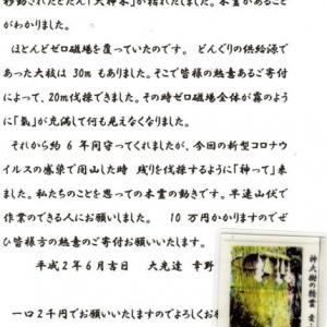 ゼロ磁場 西日本一 氣パワー開運引き寄せスポット 大神木は皆の力で!(」6月13日)