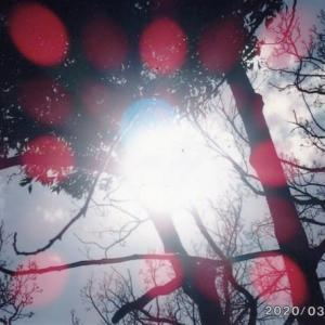 ゼロ磁場 西日本一 氣パワー開運引き寄せスポット 天空はいつも快晴(6月24日)