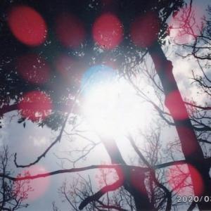 ゼロ磁場 西日本一 氣パワー開運引き寄せスポット ゼロ磁場の空はいつも曼陀羅光(7月10日)