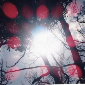 ゼロ磁場 西日本一 氣パワー開運引き寄せスポット 日本一の集団護摩祭り(8月3日)