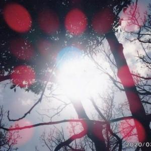ゼロ磁場 日本一の集団 氣パワー開運引き寄せスポット 神のパワー(9月20日)