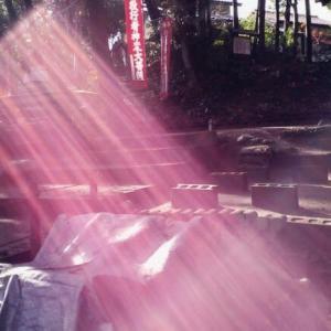 """ゼロ磁場 日本一良い仲間 氣パワー開運引き寄せスポット """"光の時代"""" (6月24日)"""