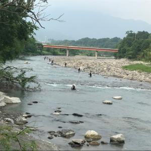 6月5日(金)荒川柳大橋の河川情報