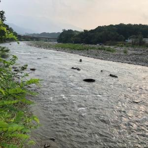 8月7日(金)荒川柳大橋の河川情報