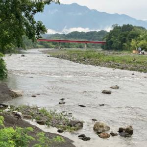 6月14日(月)荒川本流柳大橋の河川情報
