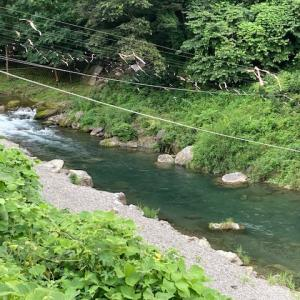 7月21日(水)秩父フライフィールドの河川情報