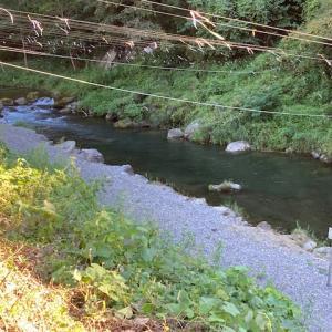 9月19日(日)秩父フライフィールドの河川情報