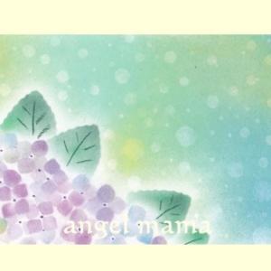 アジサイの花、、