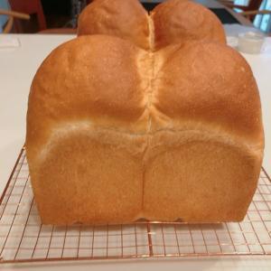 山形食パンと今月レッスンスタートしました