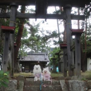 誉田神社~♪