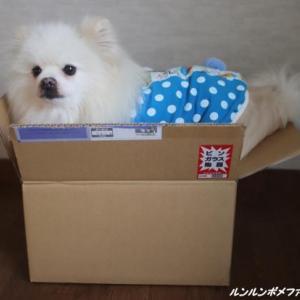 箱は好きですか~♪