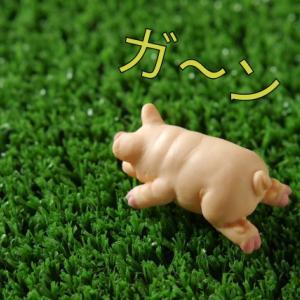 【日米共通】下落なんかに負けないぜっ(><)