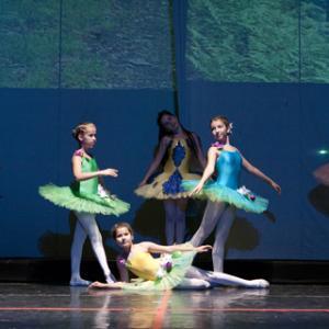 娘の子供バレエ公演。