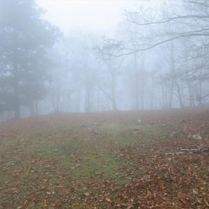 秋の明神平 de テント泊 ~幻想的だった薊岳~
