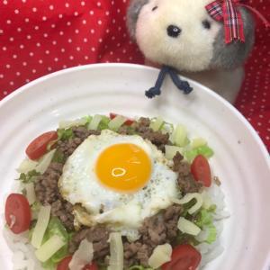 【私流わんちゃんレシピ】タコライス