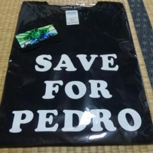 SAVE FOR PEDRO