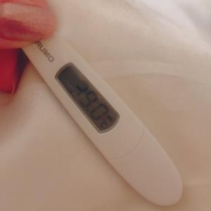 インフルエンザから復活しました!&ポンドル、エントリー検討中