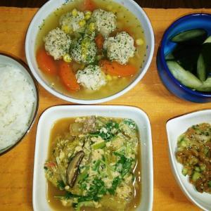 食事日記  鶏団子スープ。
