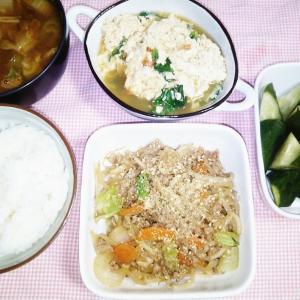 食事日記  ひき肉野菜炒め。
