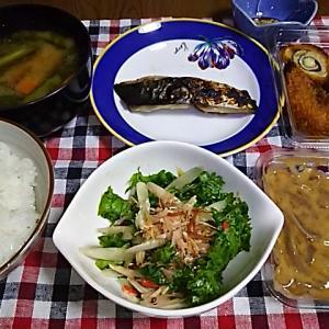 食事日記  ミョウガタケとわさび菜のおかか和え。