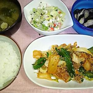 食事日記  キムチひき肉炒め。