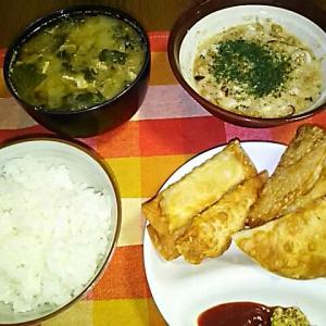 食事日記   チーズ、ソーセージ揚げ餃子。