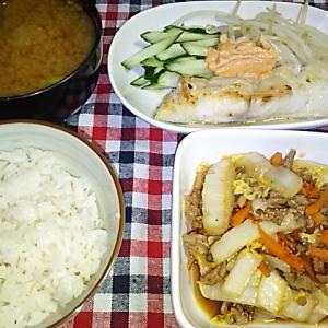 食事日記  白菜とひき肉豆板醤炒め。