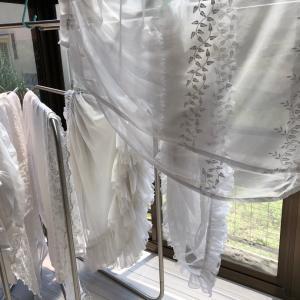 カーテンのお洗濯。┣凹ヘ('▽'*)┫ パンパン♪