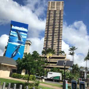 ハワイにいってきました!