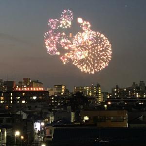 """""""""""""""愛犬家の皆さんへ!ゲリラ花火注意"""""""""""""""