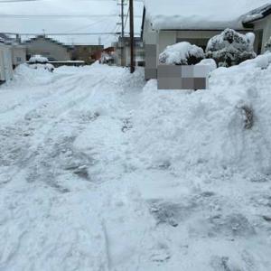 先日の大雪……そして………゜。°。°。°。°。 ┐(∀∀)