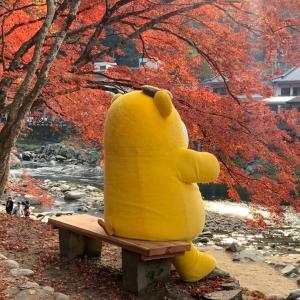 黄色いくまモン?!