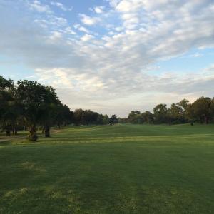 最近、ゴルフによく行っています。