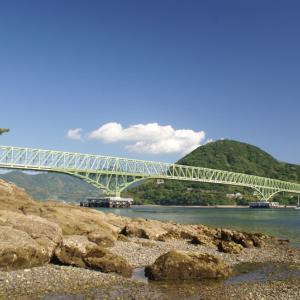 対岸から大島大橋