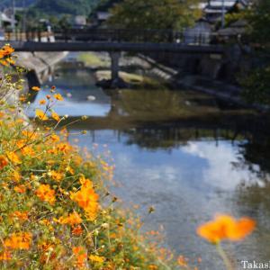 秋の屋代川